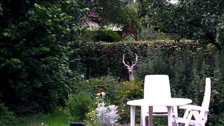 Tuin met tuinset en hert